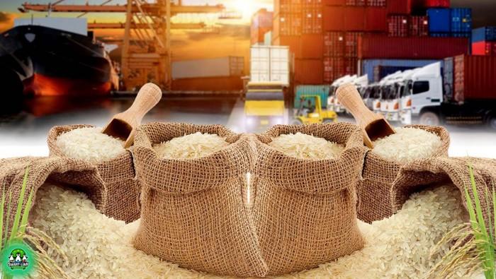 Tiềm năng xuất khẩu gạo sang thị trường Châu Âu