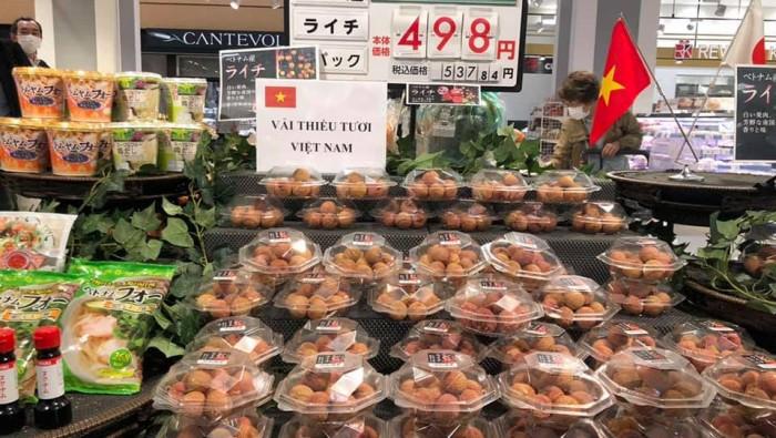 Xuất khẩu nông sản Việt: Các lưu ý khi xuất khẩu vải vào thị trường Nhật Bản.