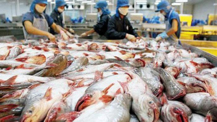 Doanh nghiệp Việt cần chú ý các tiêu chuẩn gì khi xuất khẩu hàng hoá sang EU?