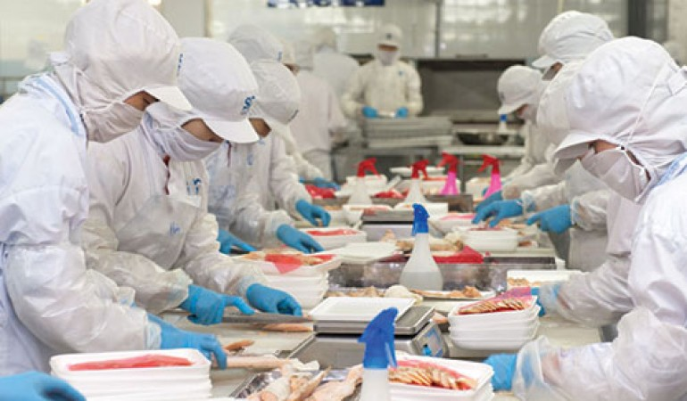 """Xuất khẩu mực, bạch tuộc sang Mỹ tăng với tốc độ """"phi mã"""""""